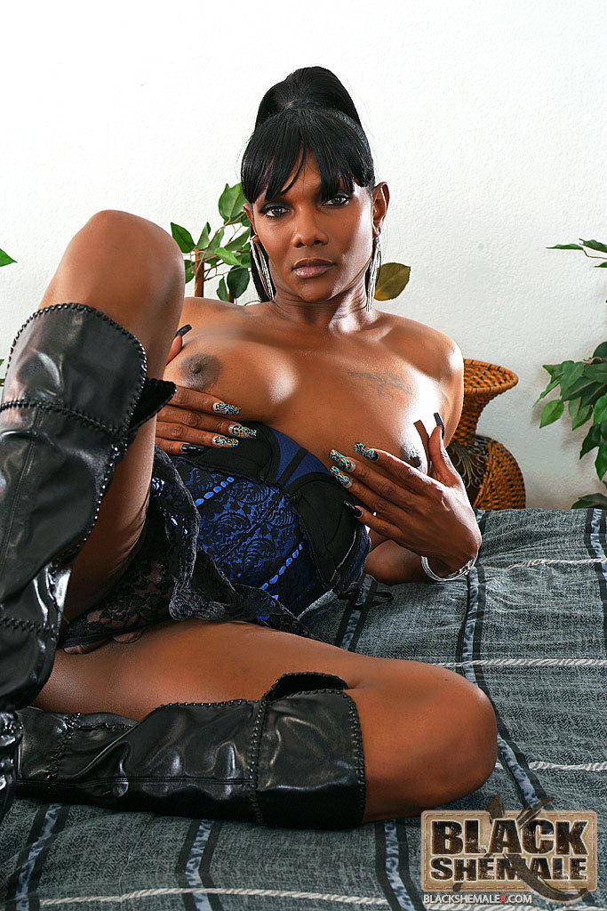 Fine Black Transexual Bares Her Tool