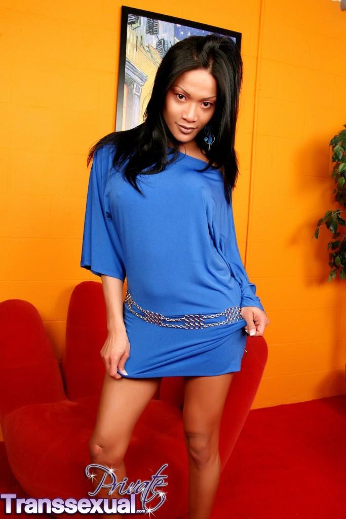 Irresistibly Attractive Exotical Femboy Rachel Posing
