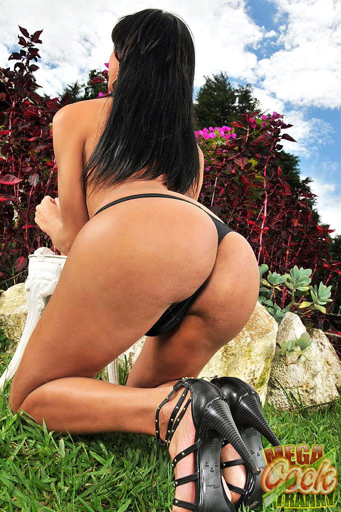 Lovely Brazilian Ts Striptease Outdoors