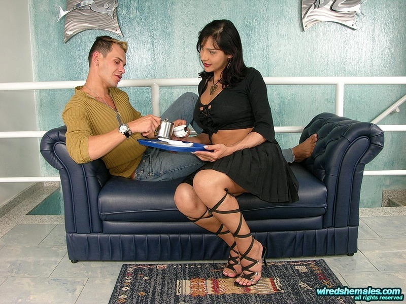 Provocative Bigtitted Tgirl Under Frantic Anal Onslaught Right On The Sofa