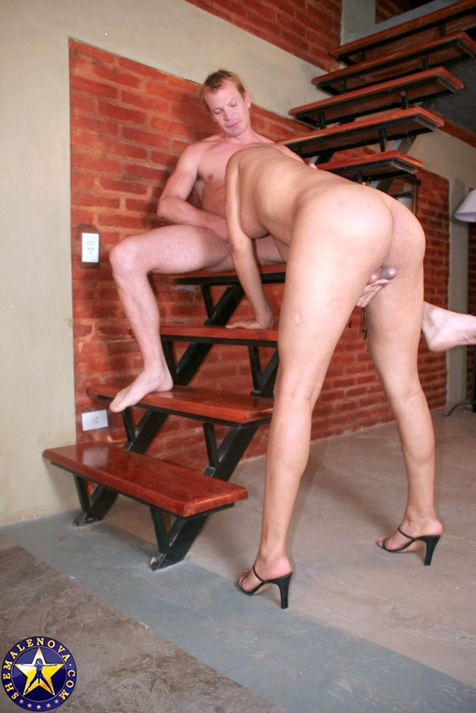 Sultry Shemale Chiara Getting Nailed Doggy Style