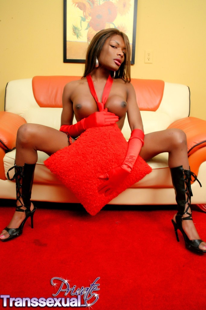 Super Sensuous Ebony TS Amyiaa Starr Teasing
