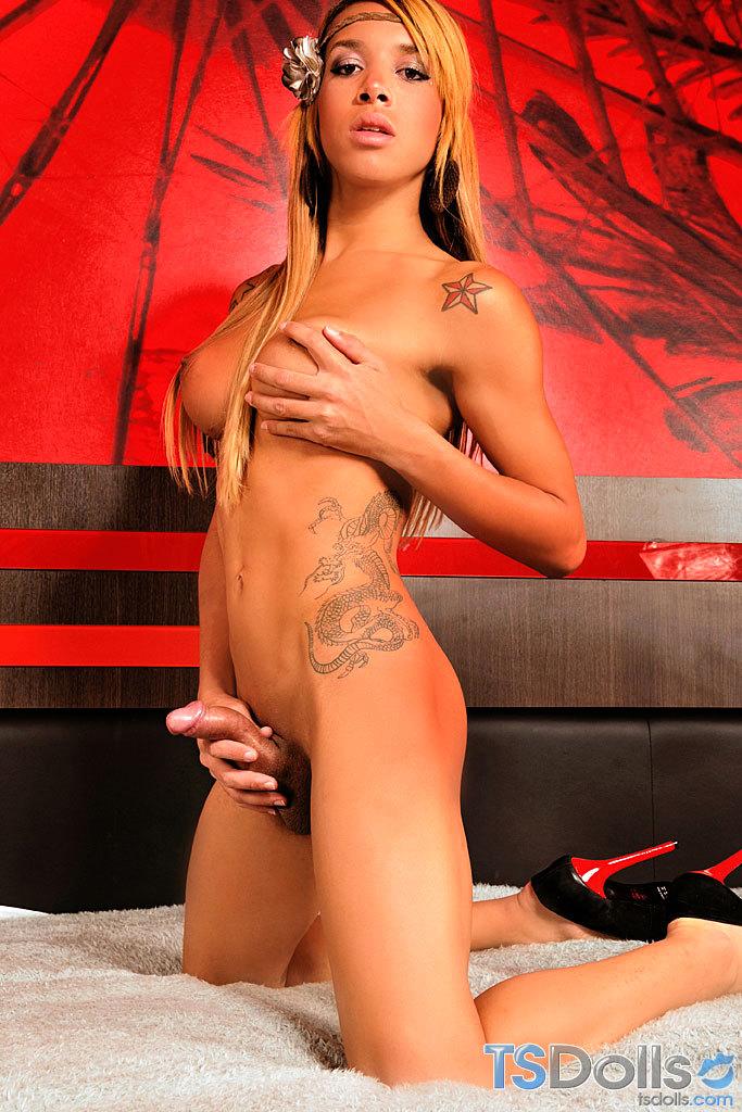 T-Girl Doll Amanda Araujo Strips And Poses