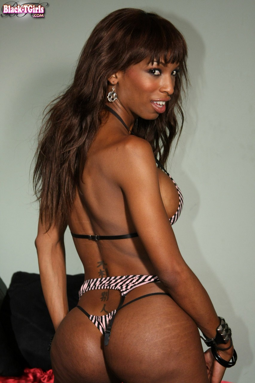 T-Girl Pornstar Natassia Fantasies Performs A Spicy Striptease