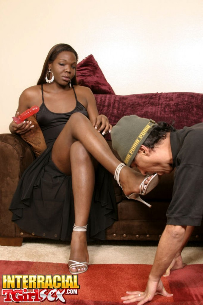 Titillating Ebony T-Girl Aniyah Gets Her Cock Sucked Dry