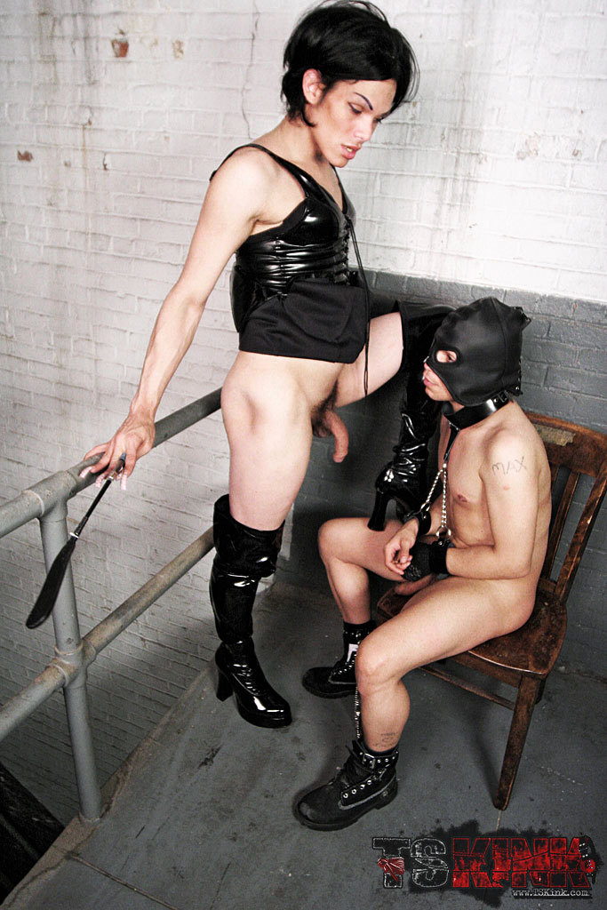 Wild Femboy Slave Training Action